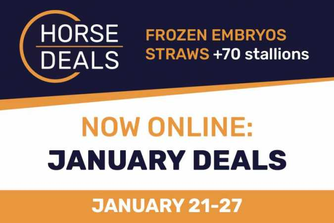 January Deals nu online bij HorseDeals