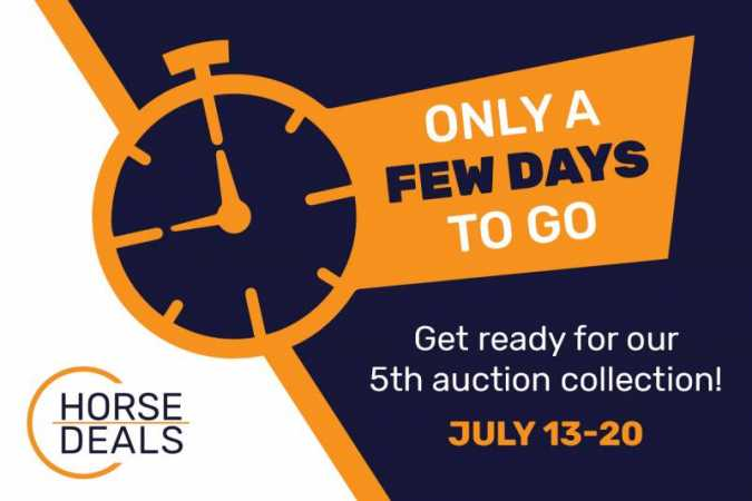 Countdown to the 5th auction collection!