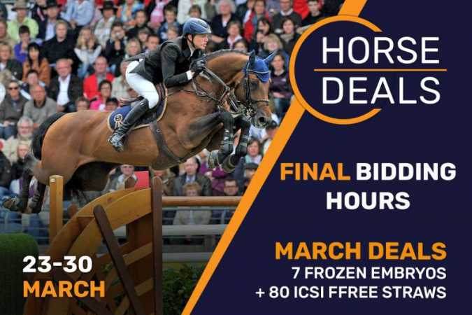 Final hours to bid on HorseDeals' ICSI free straws!