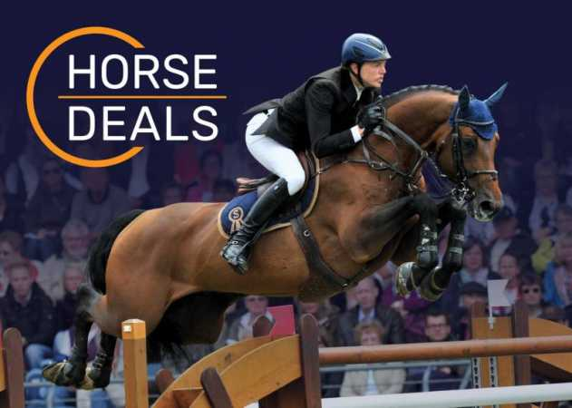 September Deals confirm the renowned status of HorseDeals